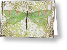 Green Dragonfly On Vintage Tin Greeting Card