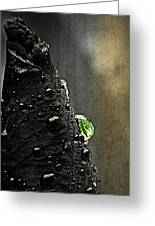 Green Droplet  Greeting Card