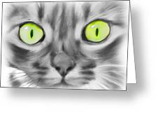 Green Eyes Greeting Card