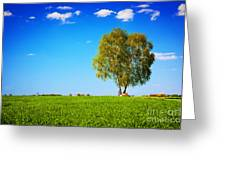 Green Field Landscape With A Single Tree Greeting Card
