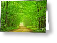 Green Forest Tunnel Greeting Card