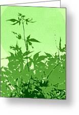 Green Green Haiku Greeting Card