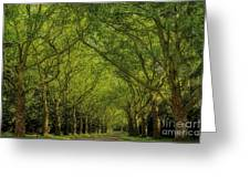 Green Green World Greeting Card
