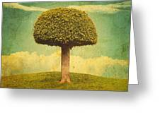Green Growing Lullaby Greeting Card
