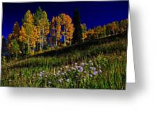 Green Hills Of Earth Greeting Card
