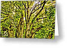 Green Leafy Trees Greeting Card