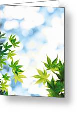 Green Leaves On Mottled Cloudy Sky Greeting Card
