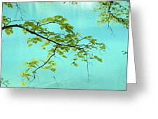 Green Leaves Over Blue Water Greeting Card