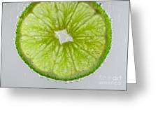 Green Lime In Tonic Water Greeting Card