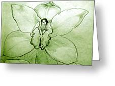 Green Orchid Greeting Card by Patricia Howitt