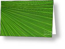 Green Palm Abstract Greeting Card