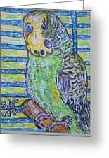 Green Parakeet Greeting Card