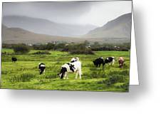 Green Pastures Greeting Card