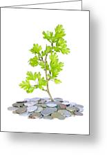 Green Plant And Money  Greeting Card