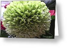 Green Pom Pom Greeting Card
