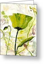 Green Poppy 003 Greeting Card
