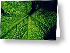 Green Ribbons Of Life Greeting Card