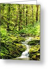 Green River No2 Greeting Card