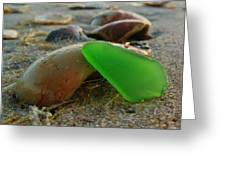 Green Sea Glass And Shells Hatteras Island 9 10/17 Greeting Card