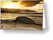 Green Sea Turtle At Sunset V2 Greeting Card