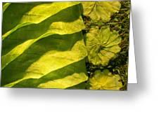 Green Silk 03 Greeting Card