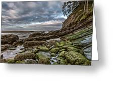Green Stone Shore Greeting Card