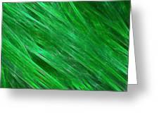 Green Streaming Greeting Card