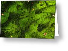 Green Surface Greeting Card