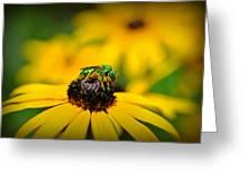 Green Sweat Bee Greeting Card