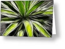 Green Tidings Of Joy Greeting Card