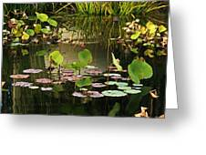 Greens On A Pond 2 Greeting Card