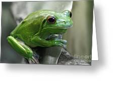 Greeny 5 Greeting Card
