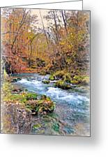 Greer Spring In Fall Greeting Card