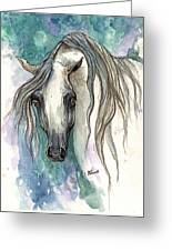 Grey Arabian Horse 2013 11 26 Greeting Card