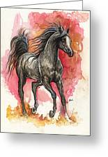 Grey Arabian Horse 2014 01 12 Greeting Card