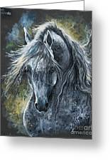Grey Arabian Horse Oil Painting 2 Greeting Card