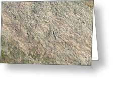 Grey Rock Texture Greeting Card