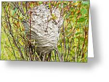 Grey Wasps Nest In Willow Bush Greeting Card