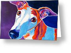 Greyhound - Halle Greeting Card by Alicia VanNoy Call