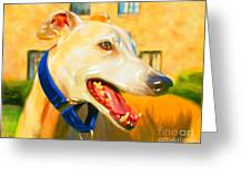 Greyhound Painting Greeting Card by Iain McDonald
