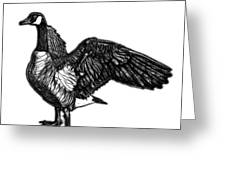 Greyscale Canada Goose Pop Art - 7585 - Wb Greeting Card