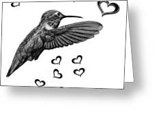 Greyscale Hummingbird - 2055 F S M Greeting Card