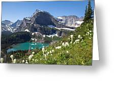 Grinnell Lake With Beargrass Greeting Card