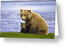 Grizzly Bear And Cub Greeting Card