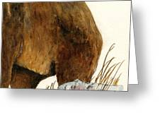 Grizzly Bear Second Part Greeting Card