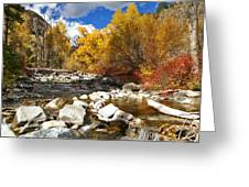 Grizzly Creek Canyon Greeting Card