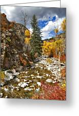 Grizzly Creek Cottonwoods Vertical Greeting Card