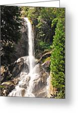 Grizzly Falls Greeting Card