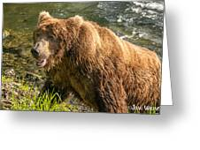 Grizzly On The River Bank Greeting Card