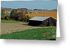 Groomed For Harvest Greeting Card by Christian Mattison